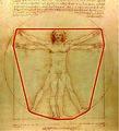 Vitruvian Man's convex hull.jpg