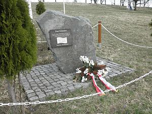 1964 T-39 shootdown incident - Memorial at the crash site near Vogelsberg