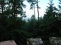 Vue depuis le belvédère du Wasenkoepfel - Paysage.jpg