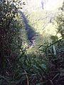 Vue sur le barrage de Takamaka 1 - panoramio.jpg