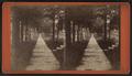 Walk in Gansevoot (i.e. Gansevoort) Street, Little Falls, N.Y, by W. M. Tucker.png