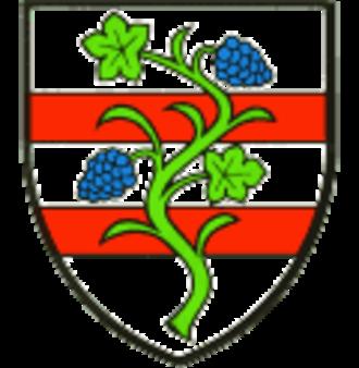 Bad Hönningen - Image: Wappen bad hoenningen