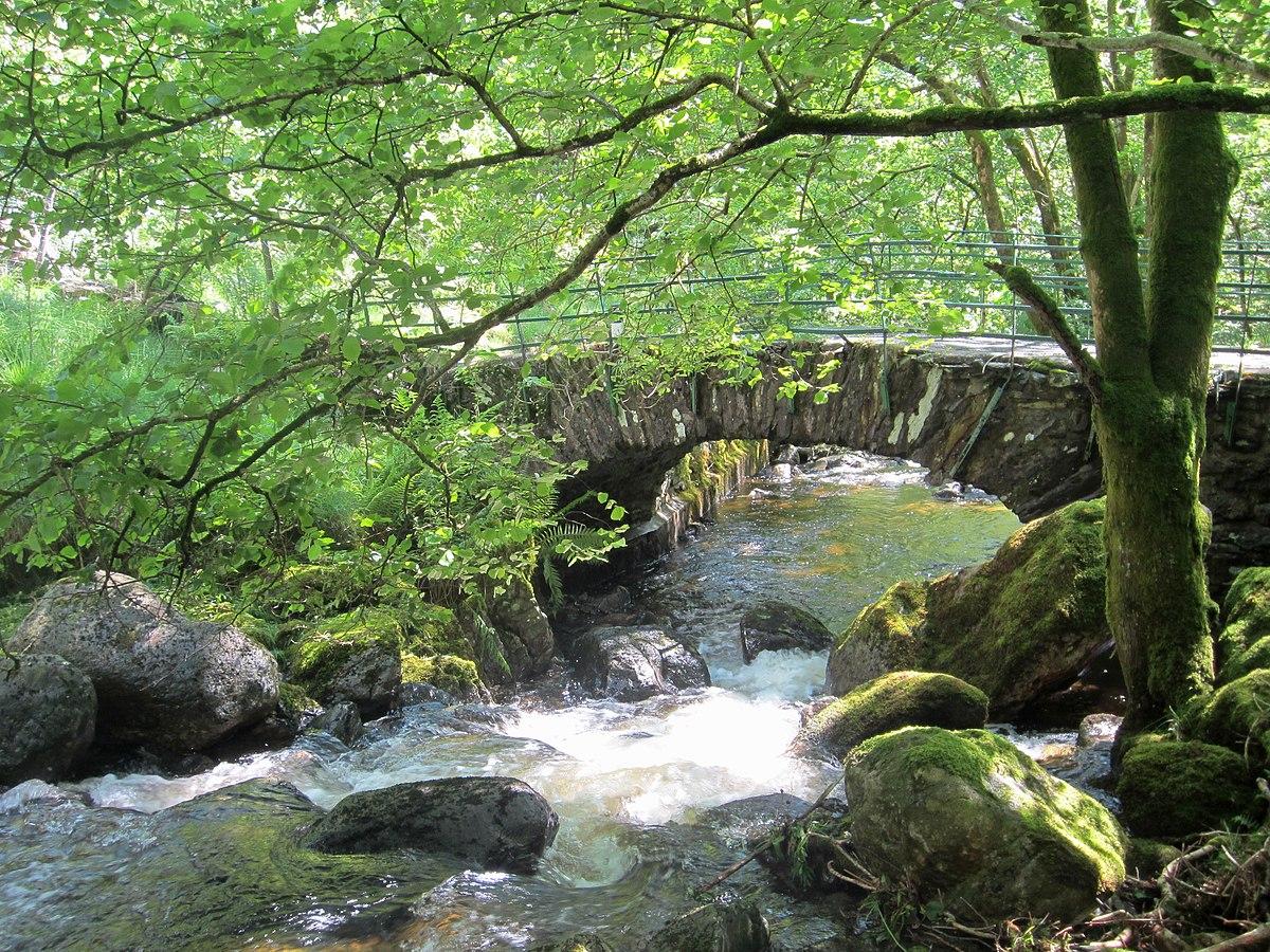 Water Yeat Bridge.jpg