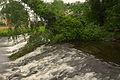 Water of Leith; June 15, 2014 05.jpg