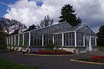 Waterlily House - Kew Gardens.JPG