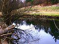 Weir - panoramio (5).jpg