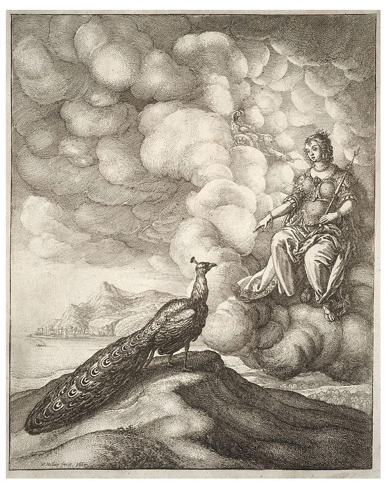 Wenceslas Hollar - Juno and the peacock (State 1).jpg