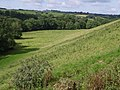 West Lew valley - geograph.org.uk - 493553.jpg