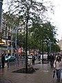 Wien, Mariahilferstraße (8080811676).jpg