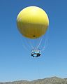 Wildanimalpark-balloon.jpg