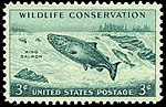 Wildlife salmon 1956 U.S. stamp.1.jpg