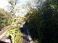 Winnetka Trail.jpg