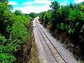 Wisconsin ^ Southern Tracks 2 - panoramio.jpg