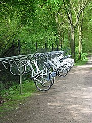 White cycles for free use in national park Hoge Veluwe, the Netherlands