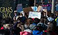 Women's March Chicago (32463173985).jpg