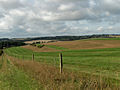 Woolley Down - geograph.org.uk - 228447.jpg