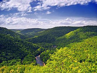 Sullivan County, Pennsylvania - Worlds End State Park