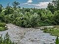 Wyna Flussmündung in die Suhre, Suhr AG 20210709-jag9889.jpg
