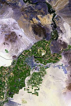 Top-down view of green agricultural lands surrounded by desert