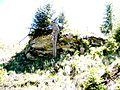 Zamcisko - panoramio.jpg