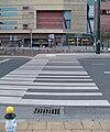 Zebra emilii plater szopen.jpg