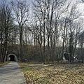 Zicht op de praboolvormige ingangen van de twee tunnels onder de spoordijk met spoorlijn, links de fietstunnel en rechts de tunnel voor het snelverkeer - Kerkrade - 20388030 - RCE.jpg