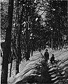 Zimski motiv 1930.jpg