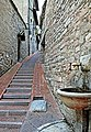 """"""" Assisi """" 0011.jpg"""