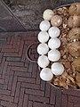 (Street vendors in Quito) cutting coconuts in Quito.jpg