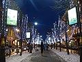 Большая Конюшенная в новогодние праздники - panoramio.jpg