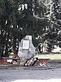 Братська могила партизанів 59-232-0023.jpg