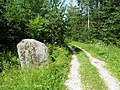 Валун Убогова (Ubogova velna akmens) - panoramio.jpg