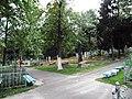 Загальний вигляд військової дільниці кладовища.JPG