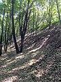 Залишки укріплень літописного Святополча (1096-1223 рр.).jpg