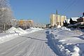 Зимняя дорога (20.01.2011) - panoramio.jpg