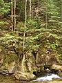 Національний природний парк «Сколівські Бескиди» - panoramio.jpg