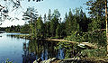 Озеро Энгозеро.jpg
