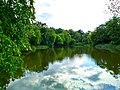 Озеро №4 (Нивки, Східна частина парку).jpg
