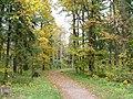 Осень в Дворцовом парке Гатчины - panoramio (5).jpg