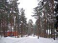 "Петровское, т-б ""Связист"". - panoramio.jpg"