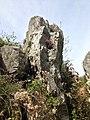 Река Петраница - природа есен.jpg