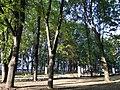 Сквер на ул. Сумской - panoramio.jpg