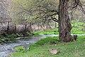 Վայրի բնություն-1 305.jpg