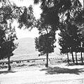 כפר תבור, הגליל התחתון-ZKlugerPhotos-00132nt-0907170685133bc4.jpg