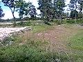 """ก่อนเป็น""""สวนสุนนท์กุล """"บ้านแก่งเค็ง - panoramio (5).jpg"""
