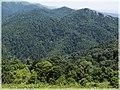 ხედი სალომეს მთიდან ^3 - panoramio.jpg