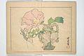 『暁斎楽画』-Kyōsai's Drawings for Pleasure (Kyōsai rakuga) MET 2013 766 a b a 08.jpg
