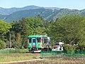 新緑の中を走る気動車 - panoramio.jpg