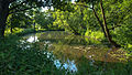 -3 Naturschutzgebiete und Nationalpark Eifel NRW Kellenberger Kamp.jpg
