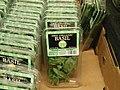 100% Organic Basil.jpg